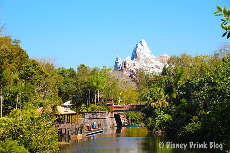 Disney World-Pop Up Bars