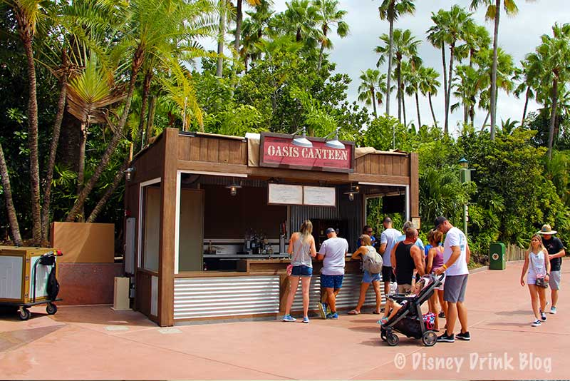 Disney's Hollywood Studios Oasis Canteen Review